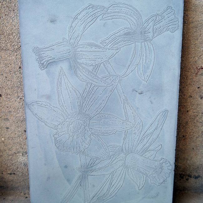 Panel-concrete-daffodil