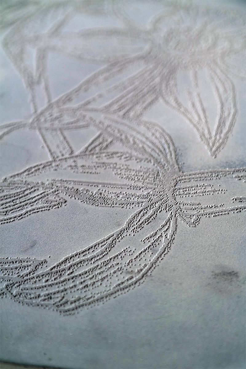 Panel-concrete-daffodil-close-up